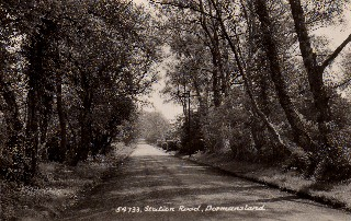 Old Postcard of Station Road, Dormansland